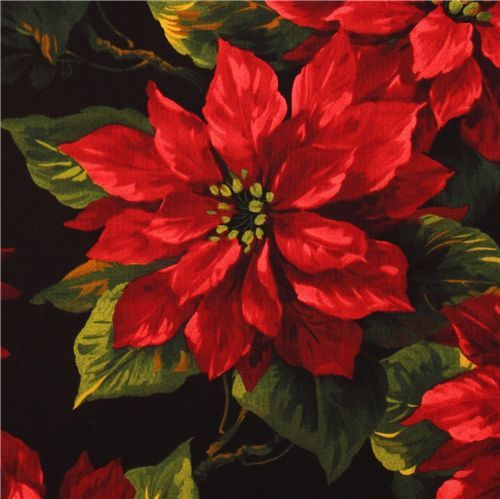 Poinsettia clipart beautiful christmas Christmas best and more flowers