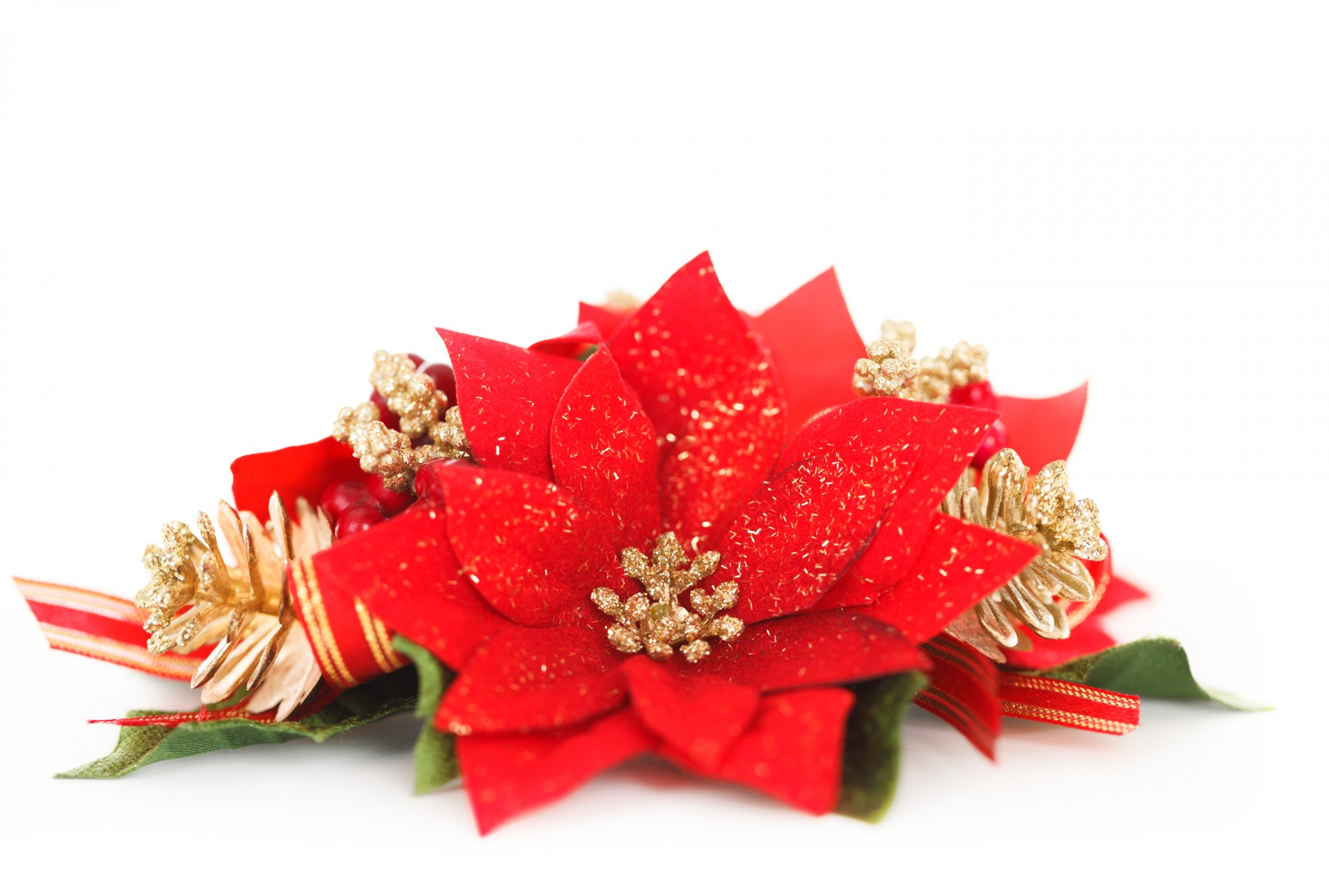 Poinsettia clipart christmas deco Stock Free Decoration Pictures Poinsettia