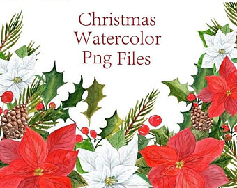 Poinsettia clipart christmas greeting Christmas florals clipart Watercolor Poinsettia