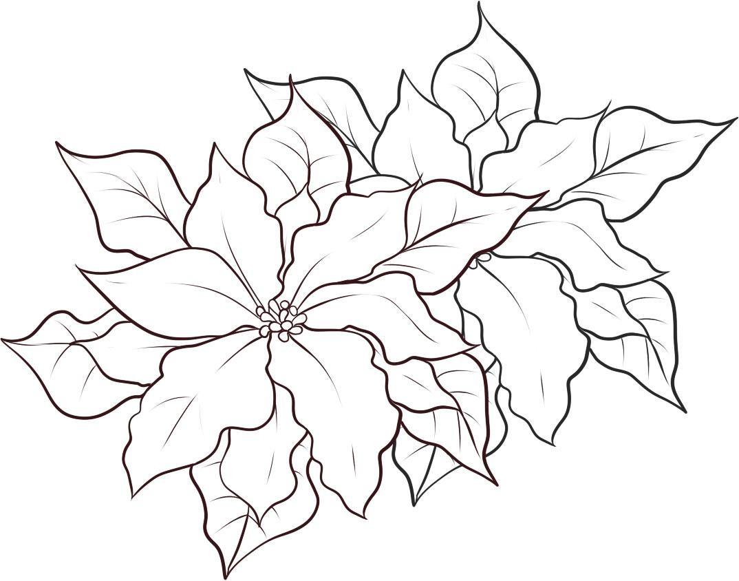 Poinsettia clipart printable White Holidays! (20) – White