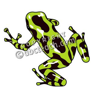 Poison Dart Frog clipart Frog art dart Poison Art