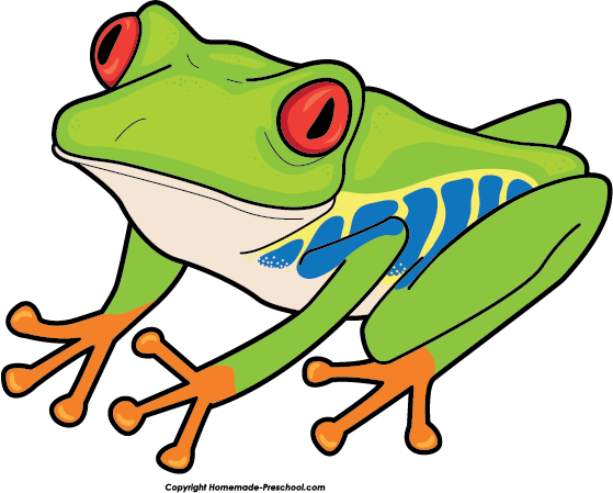 Poison Dart Frog clipart Tree Yellow eyed dart frog