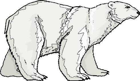 Polar  Bear clipart Polar Art clip Clip bears
