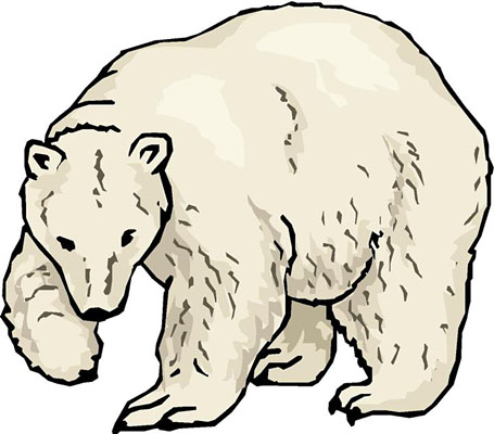 Bear Cub clipart polar animal  Polar Bear Black Clipart