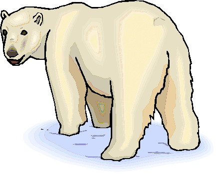 Bear Cub clipart polar animal Bears clip bears Polar Clip