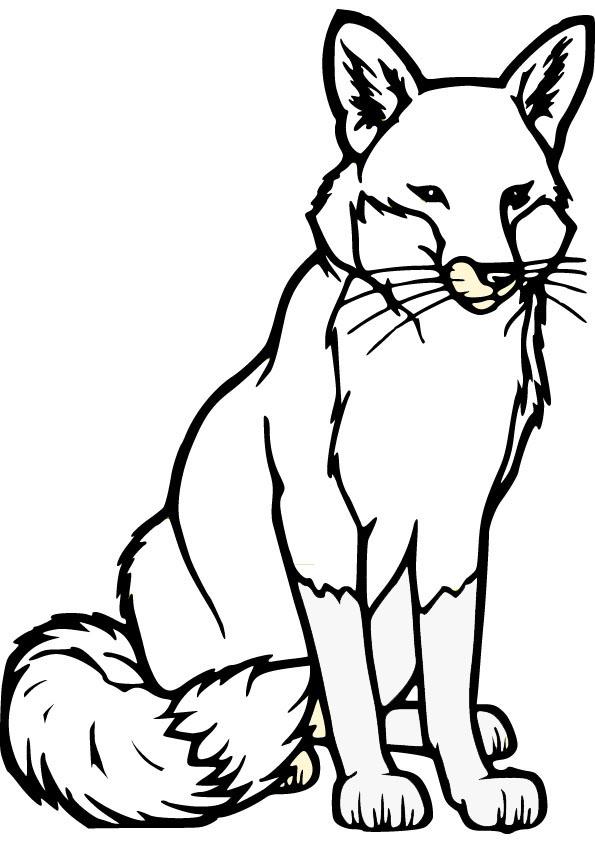 Color clipart fox Pinterest Fox Pages Fox Pages
