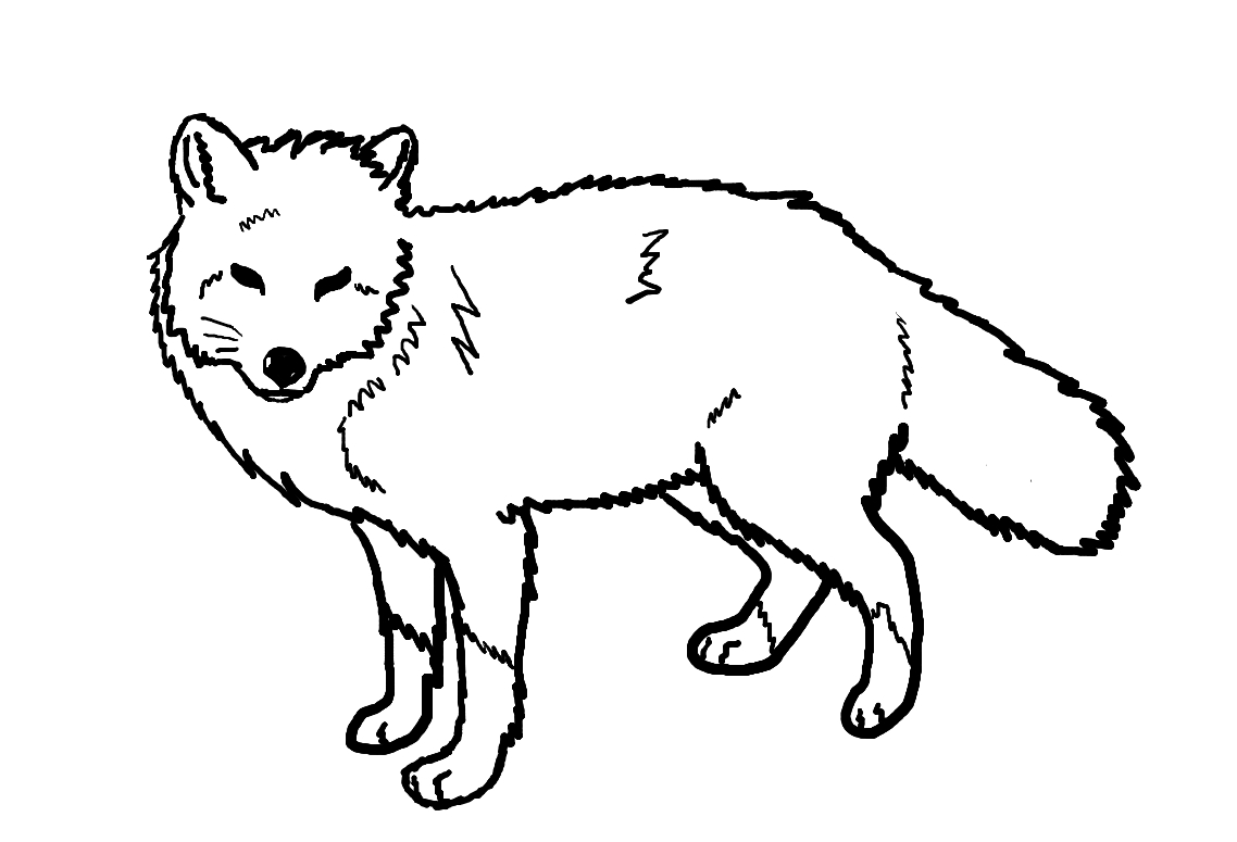 Color clipart fox Coloring Pages inspirational