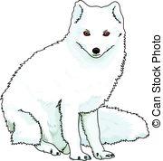 Polar Fox clipart artic Fox A  arctic a
