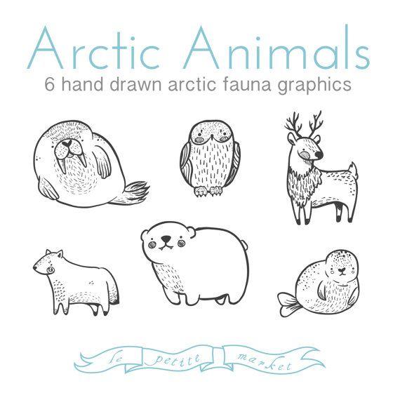 Drawn polar  bear arctic animal #1