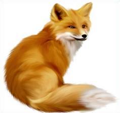 Polar Fox clipart printable Clipart fox fox Free Tags: