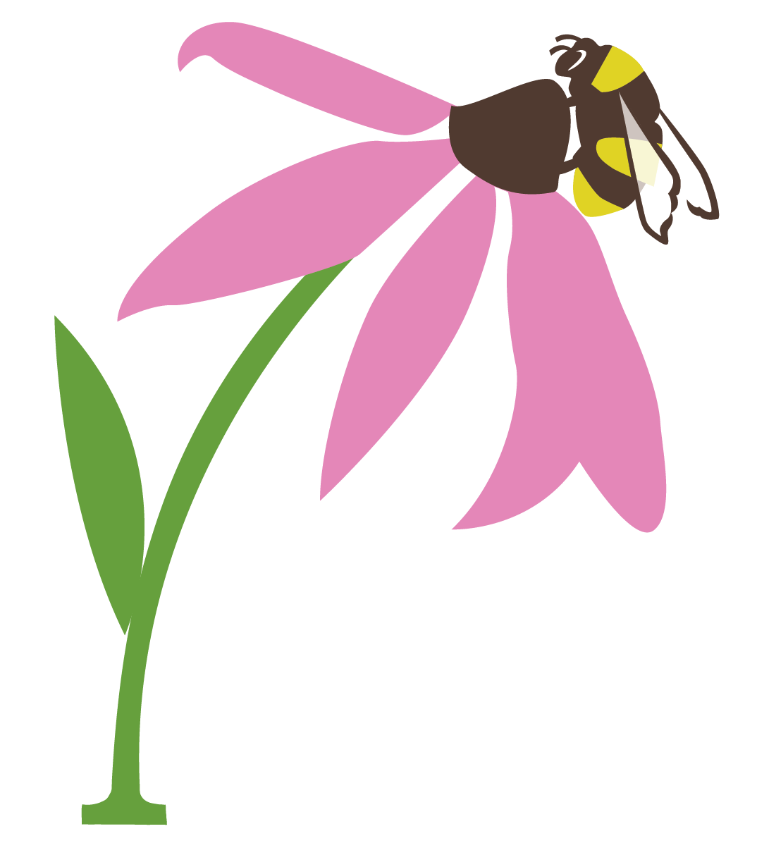 Pollination clipart Www a of of Canada