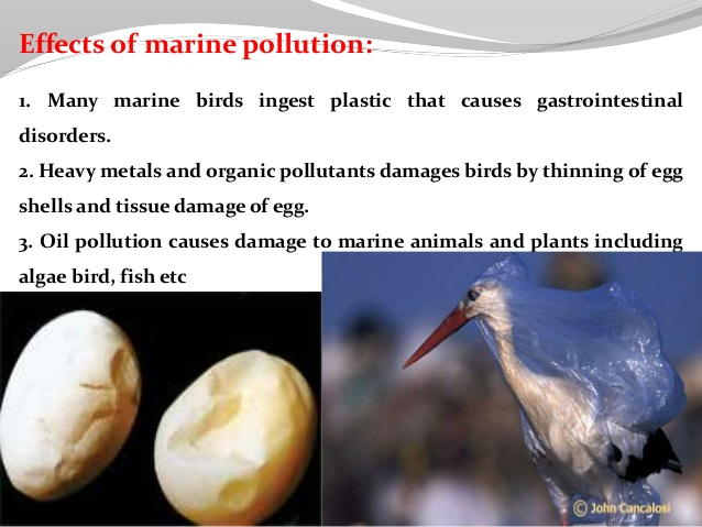 Pollution clipart behavior POLLUTION 78 ENVIRONMENTAL pollution workplaces;
