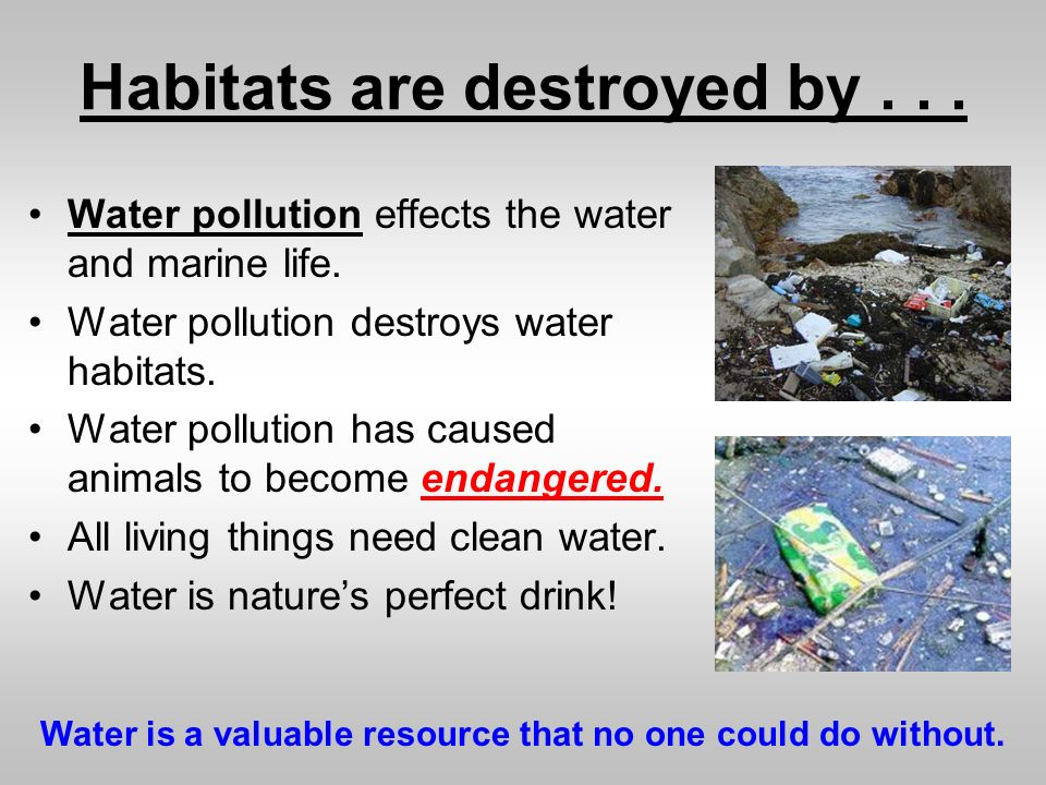Pollution clipart habitat destruction #8