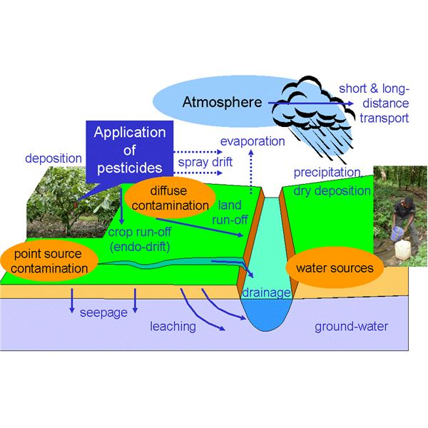 Atmosphere clipart bad environment Environmental Pollutant? Pesticide a What
