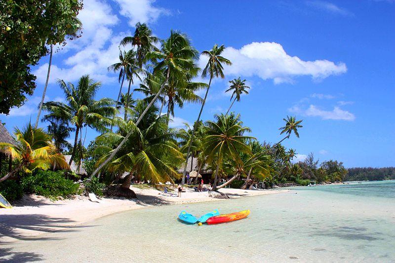 Polynesia clipart caribbean Economy HowlingPixel Polynesia French