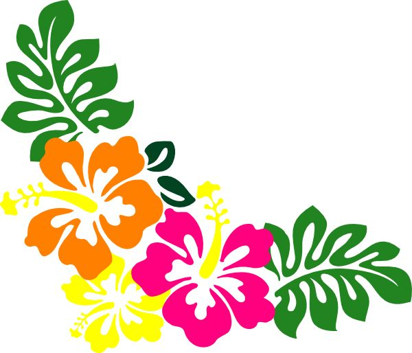 Polynesia clipart hawaiian hibiscus Clipart The about images flowers