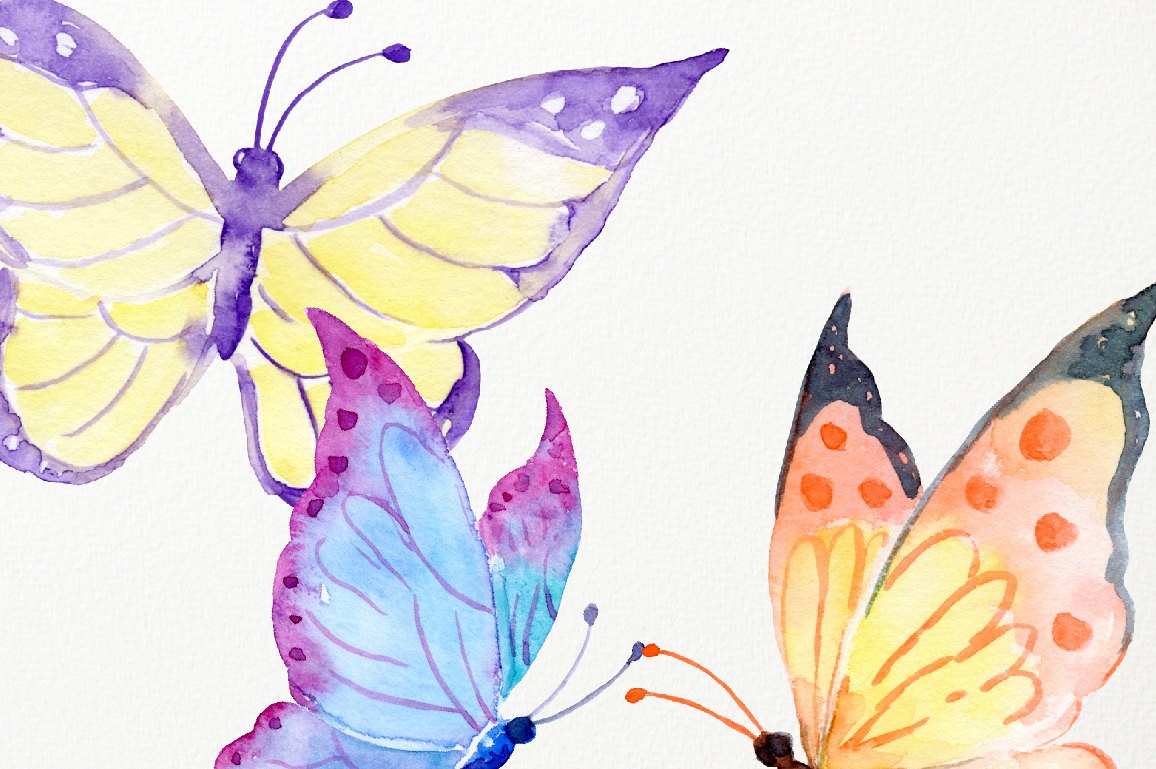 Polynesia clipart pollination Flowers and Clipart honey is