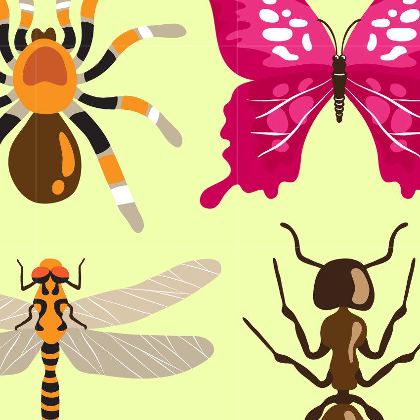 Polynesia clipart pollination / Clipart Digital Design is