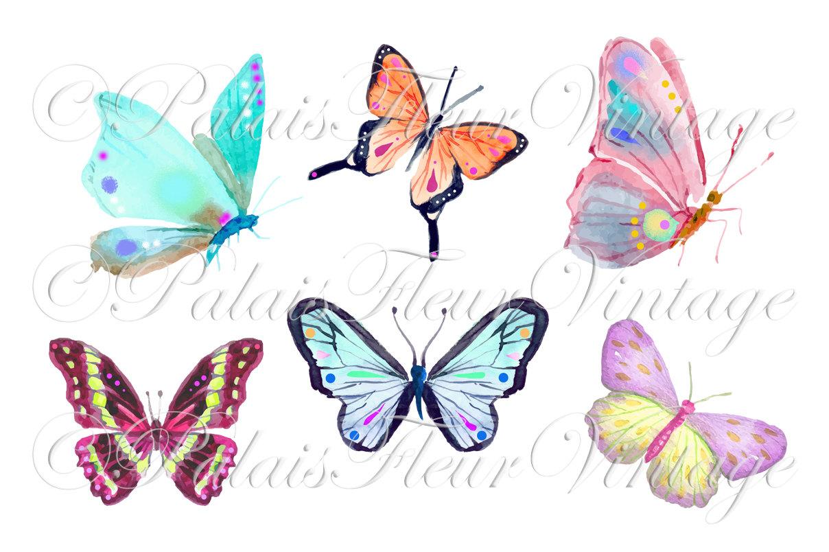 Polynesia clipart pollination Watercolor Art Clip Rainbow is