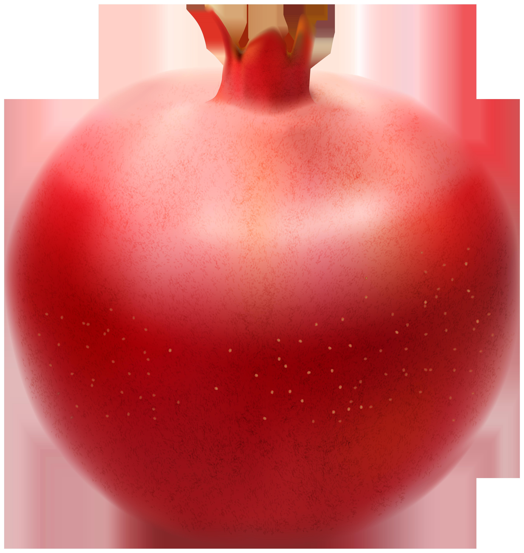 Pomegranate clipart Size full Pomegranate  Transparent