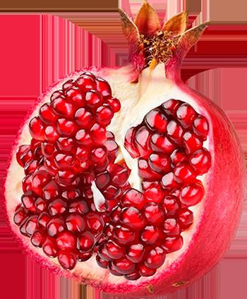 Pomegranate clipart vector Pomegranate com 3 Pomegranate Pomegranate