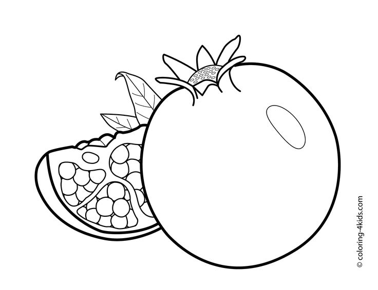Pomegranate clipart colouring page 500 pages best and images