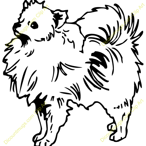 Pomeranian clipart Pomeranian Pom up is Pomeranian