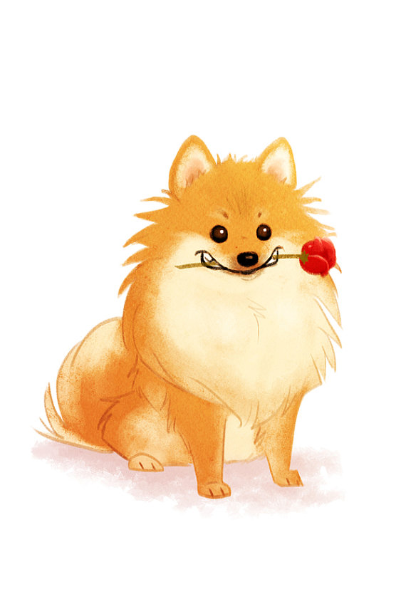Pomeranian clipart 1950 4 Digital to for