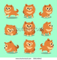 Pomeranian clipart Cartoon Pomeranian  Clipart vector
