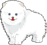 Pomeranian clipart Dogs_pomeranian_818 Search Pictures Clipart From: