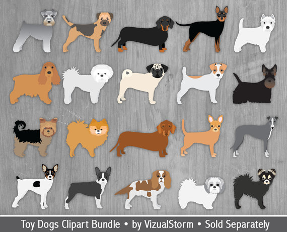 Pomeranian clipart This Clipart  Breeds Toy