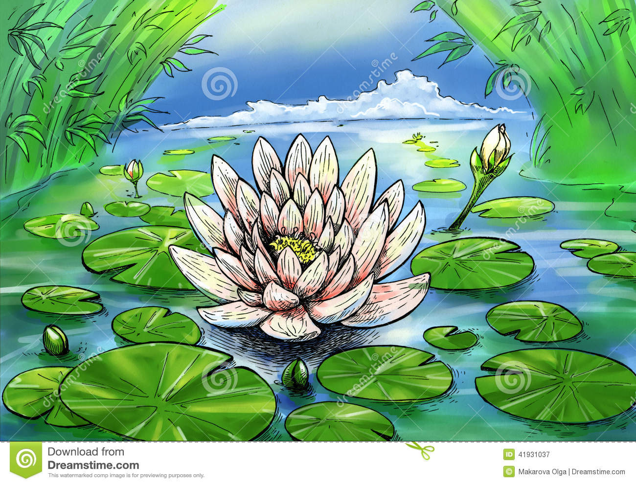 Drawn pond lily pond Lily clipart water pond Clipart