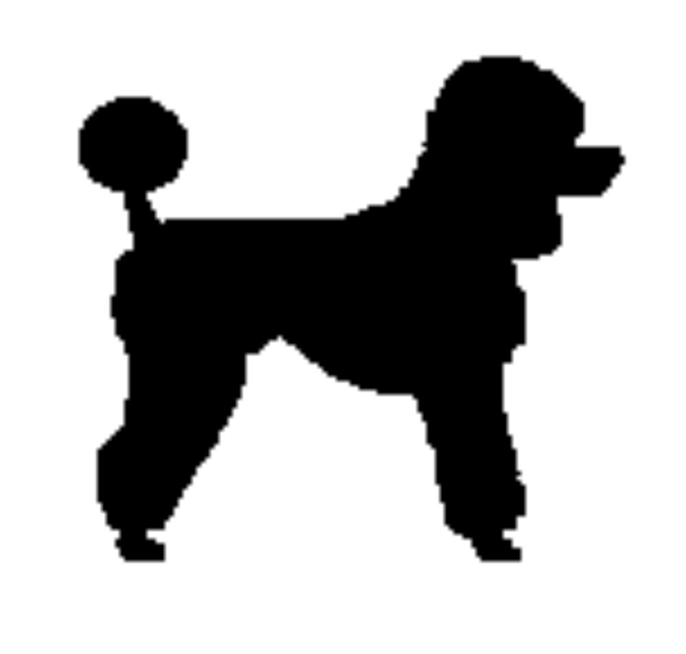 Poodle clipart BNP Search Royalty Studio poodle