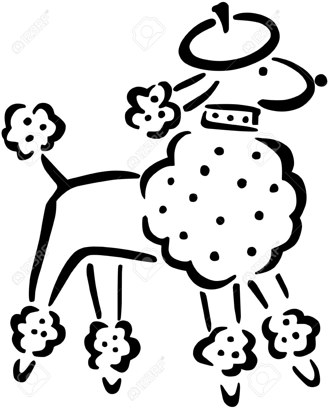 Drawn poodle clipart French  poodle Free on