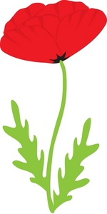 Poppy clipart Of of Clipart Clipart Poppy