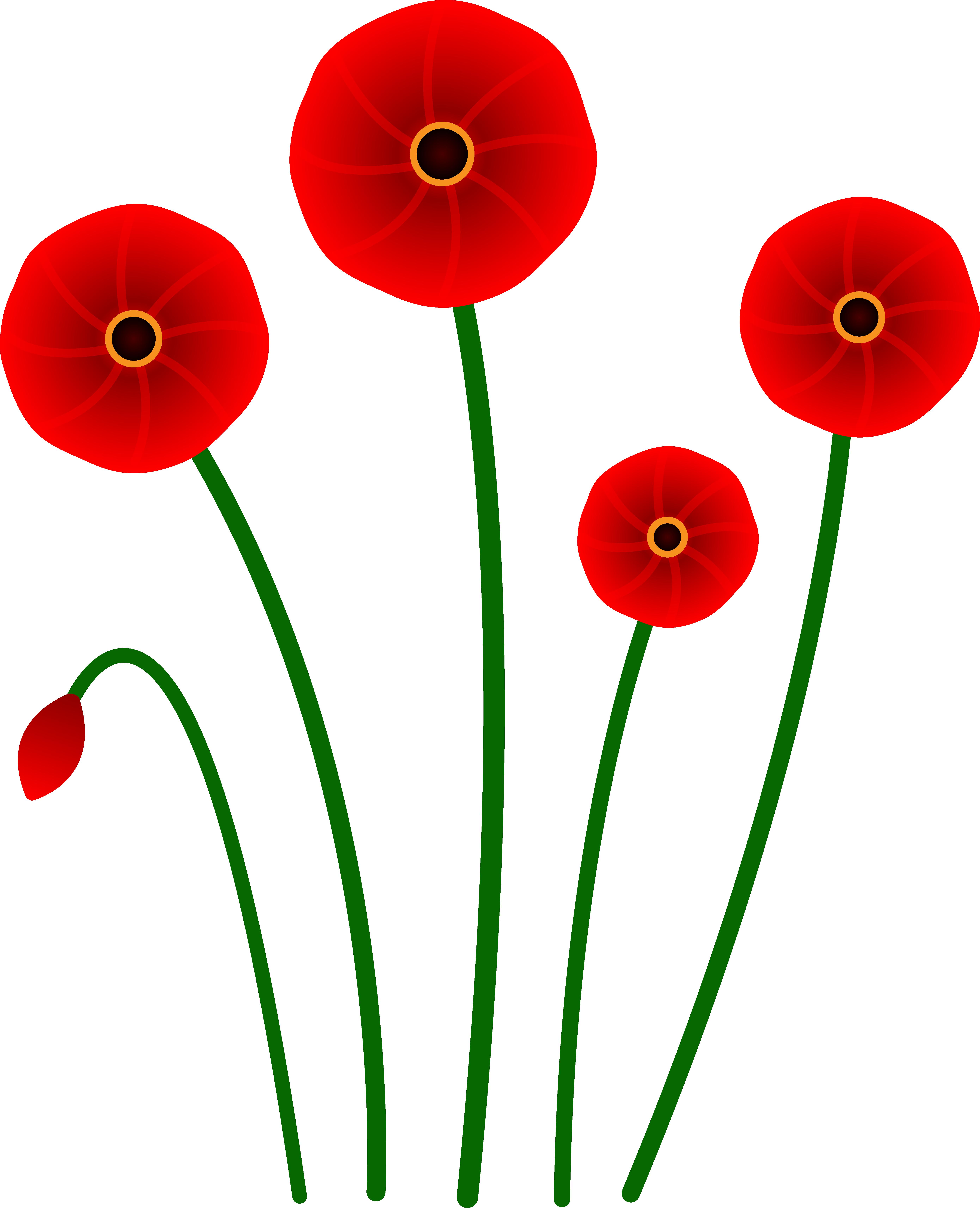 Red Flower clipart Art Clip Poppy Poppies Red