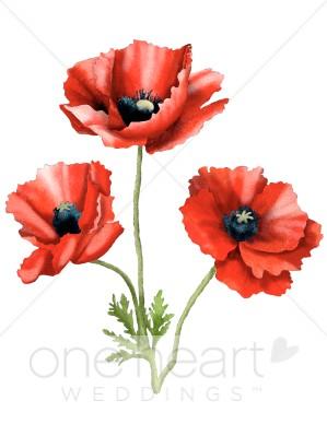Red Flower clipart poppy flower #3