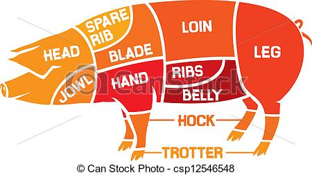 Pork clipart piece meat Meat diagrams of carcasses cuts