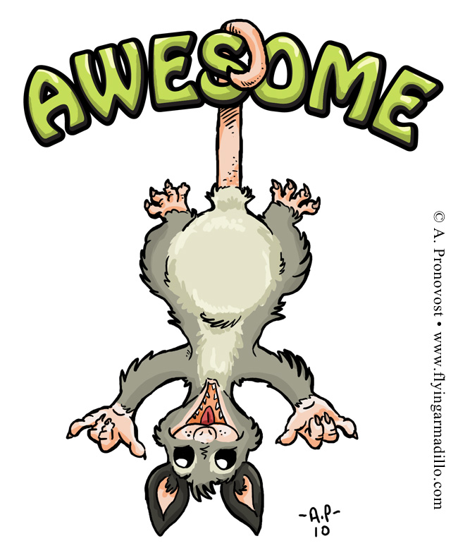 Possum clipart awesome #11
