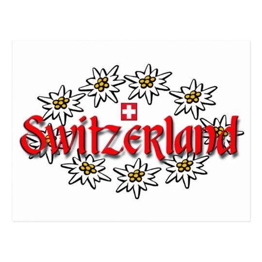 Postcard clipart switzerland Edelweiss Zazzle Switzerland Edelweiss Postcard