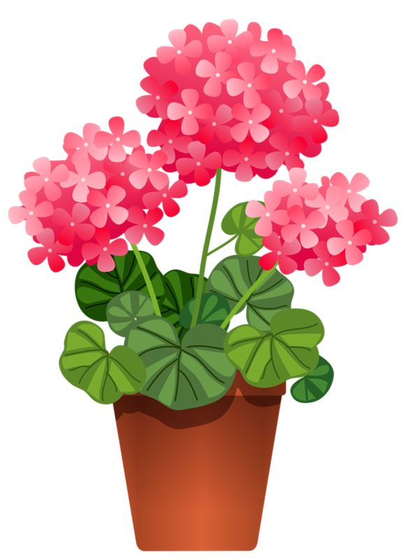 Pot Plant clipart On ART 188 FLOWERS POTTED
