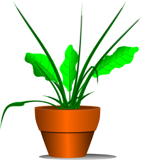 Plant clipart transparent Potted Clipart Clipart Images potted%20plant%20clipart%20black%20and%20white