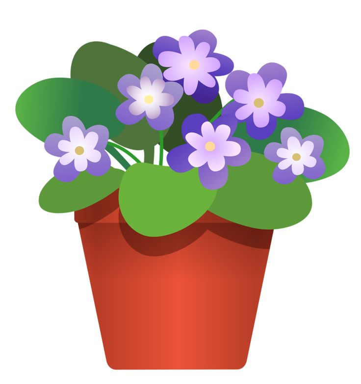 Pot Plant clipart Pinterest CLIP PLANTS FLOWERS PURPLE