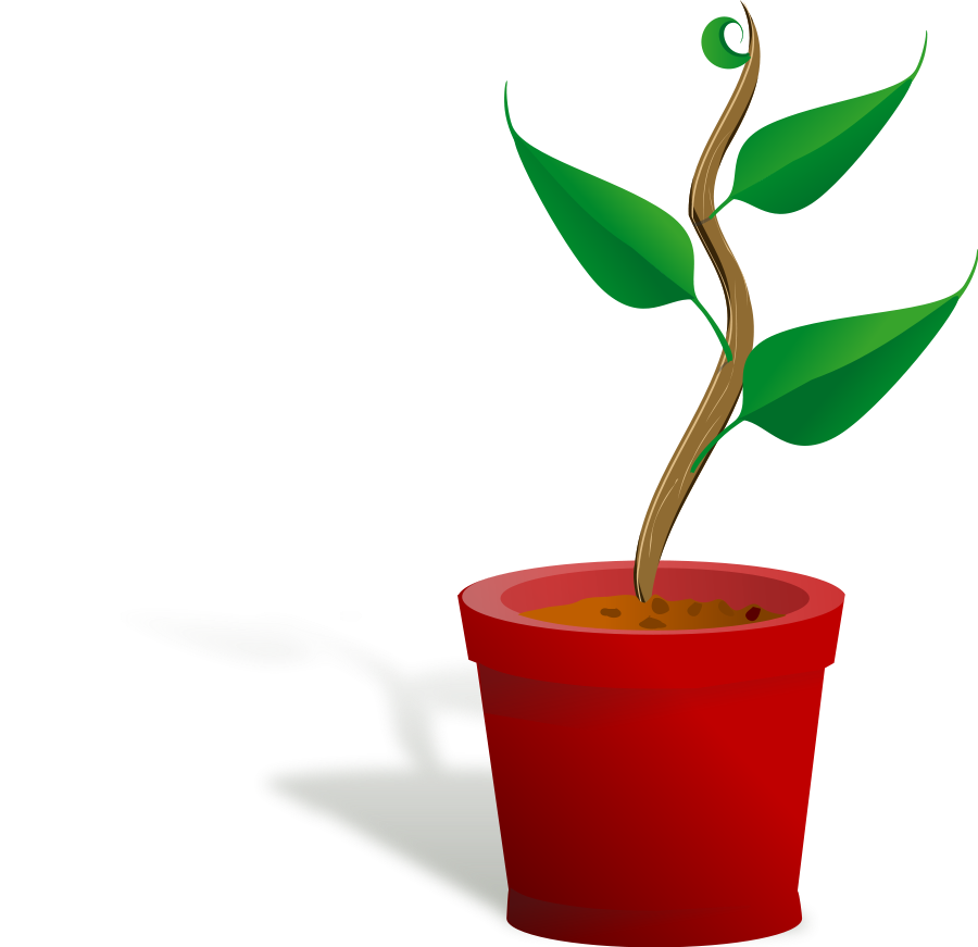 Plant clipart growth Clipart #5 Plant Plant drawings