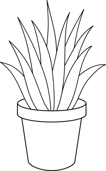 Plant clipart outline And White black plant Potted