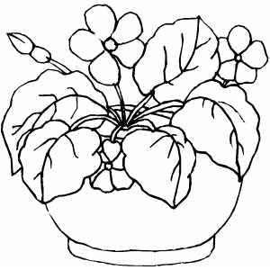 Drawn pot plant coloring page #12 Pot coloring Plant Pot