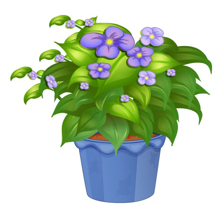 Petal clipart potted flower Png about flower images 30