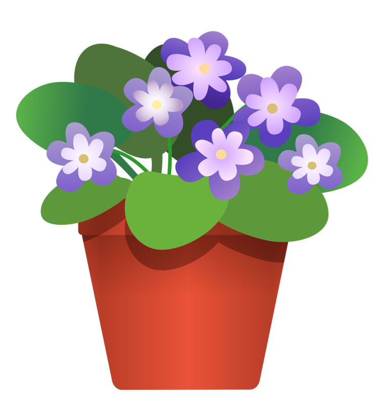 Camomile clipart potted plant Flower Potted and Explore 3