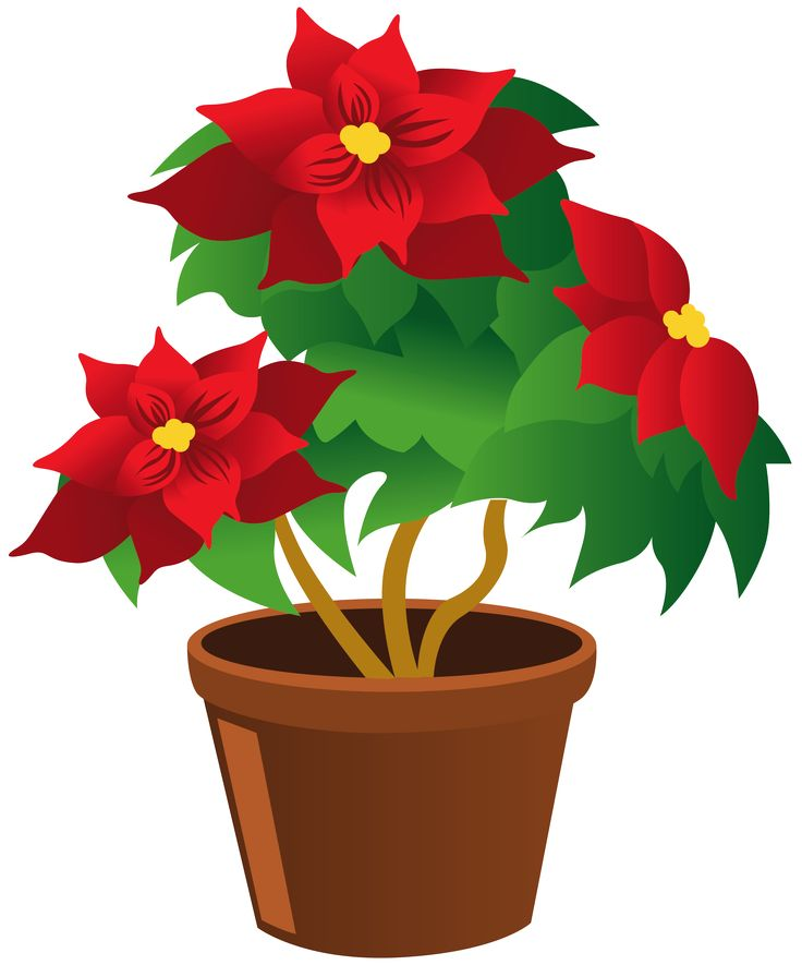 Drawn pot plant clipart POTTED on Find on 188