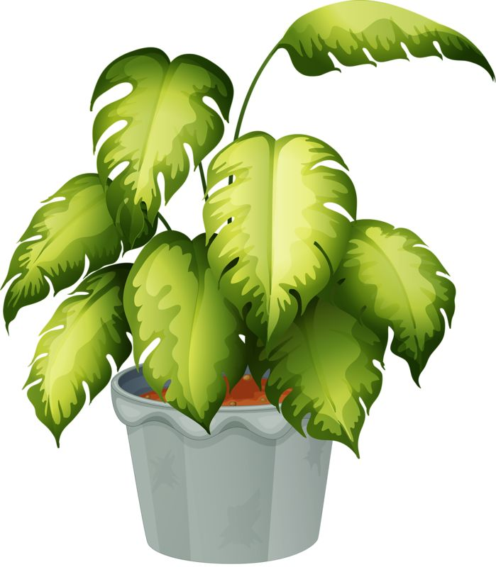 Drawn pot plant clipart CLIP ART POTTED Pinterest on